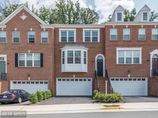 20244 Center Brook Square, Sterling, VA 20165 (#LO10283682) :: Keller Williams Pat Hiban Real Estate Group