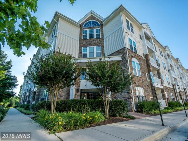 24701 Byrne Meadow Square #307, Aldie, VA 20105 (#LO10284140) :: Provident Real Estate