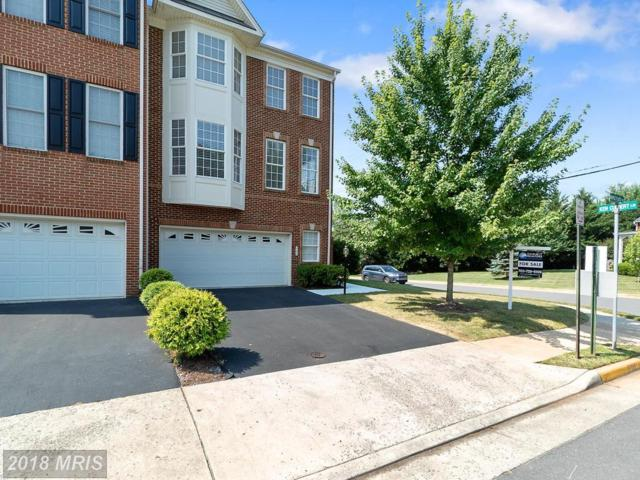 800 Maple Flats Terrace, Purcellville, VA 20132 (#LO10284198) :: LoCoMusings