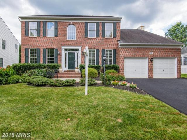 47268 Middle Bluff Place, Sterling, VA 20165 (#LO10284484) :: Bob Lucido Team of Keller Williams Integrity