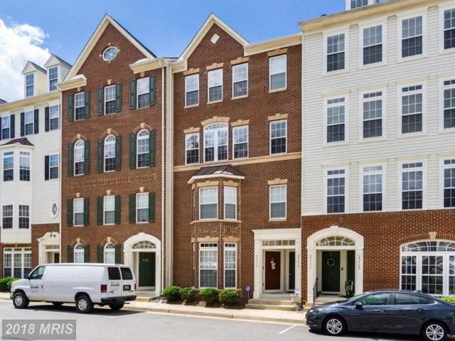 25373 Patriot Terrace, Aldie, VA 20105 (#LO10284758) :: RE/MAX Executives