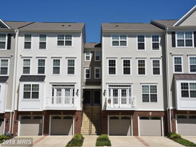45673 Winding Branch Terrace, Sterling, VA 20166 (#LO10285630) :: Charis Realty Group