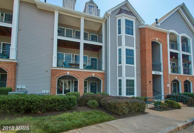 46590 Drysdale Terrace #100, Sterling, VA 20165 (#LO10286240) :: Charis Realty Group
