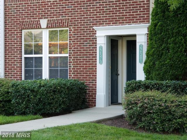 22579 Blue Elder Terrace #22579, Ashburn, VA 20148 (#LO10286344) :: Pearson Smith Realty