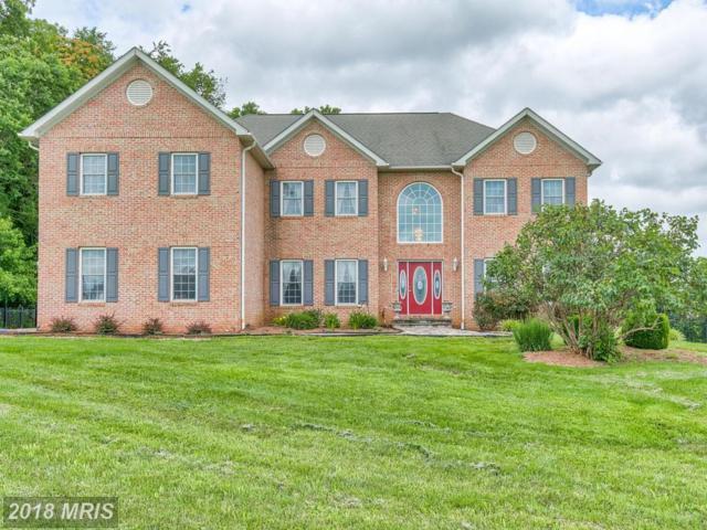 38540 Millstone Drive, Purcellville, VA 20132 (#LO10288423) :: Provident Real Estate