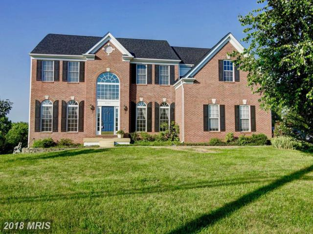 43367 Hay Road, Ashburn, VA 20147 (#LO10288866) :: Keller Williams Pat Hiban Real Estate Group