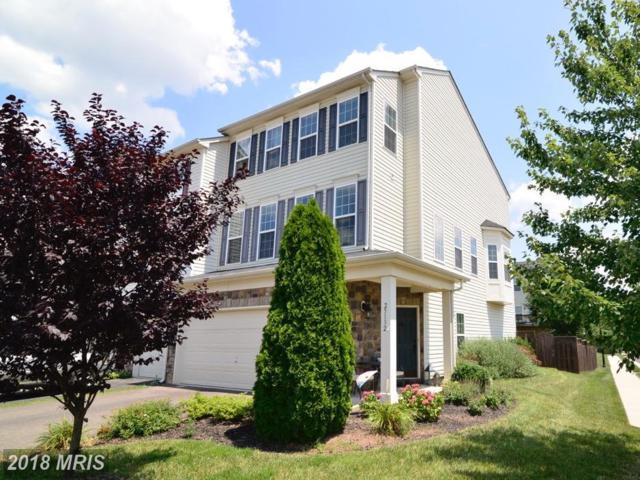 25132 Magnetite Terrace, Aldie, VA 20105 (#LO10289189) :: LoCoMusings