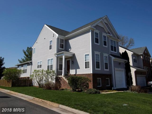 43461-# Quentin Street, Chantilly, VA 20152 (#LO10290013) :: Circadian Realty Group