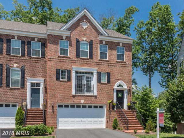 47638 Leopards Chase Terrace, Sterling, VA 20165 (#LO10290579) :: Provident Real Estate