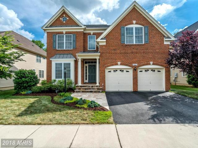 42317 Magistrate Court, Chantilly, VA 20152 (#LO10291069) :: Circadian Realty Group