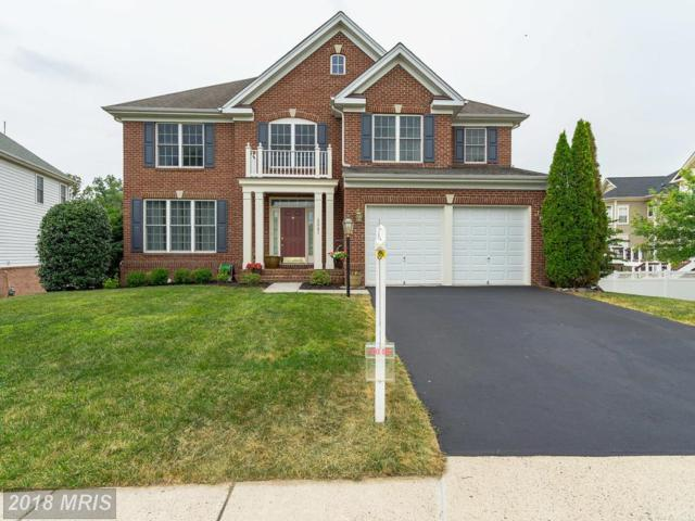42791 Explorer Drive, Ashburn, VA 20148 (#LO10291821) :: Colgan Real Estate