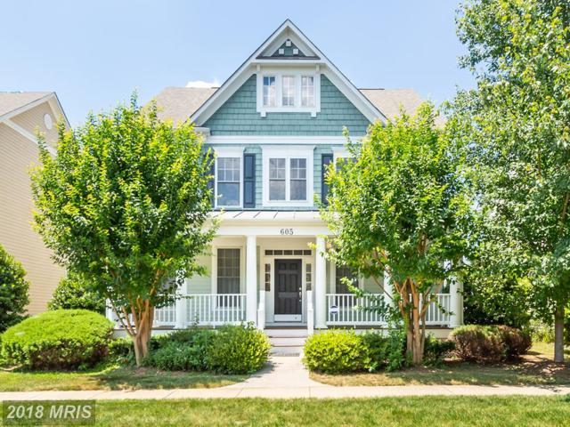605 Greysands Lane, Purcellville, VA 20132 (#LO10295317) :: Provident Real Estate