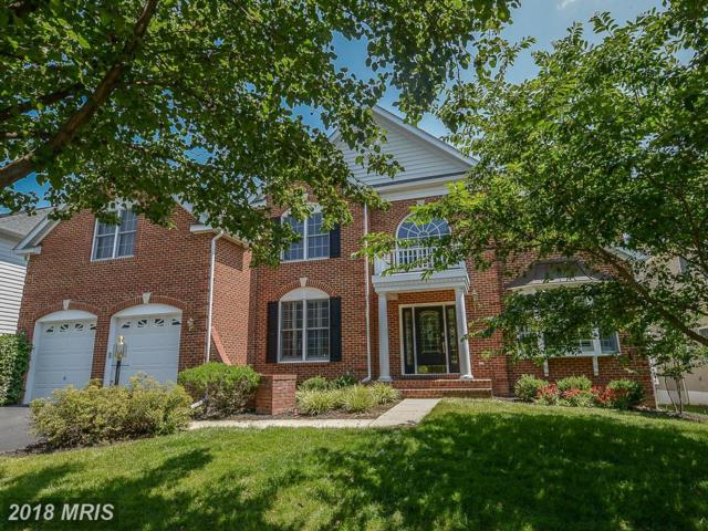 26132 Wendell Street, Chantilly, VA 20152 (#LO10296506) :: Circadian Realty Group