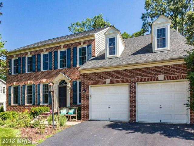 43312 Hagen Court, Chantilly, VA 20152 (#LO10296510) :: Circadian Realty Group