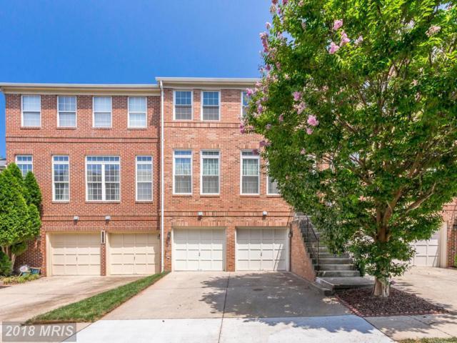 47690 Whirlpool Square, Sterling, VA 20165 (#LO10296719) :: Provident Real Estate