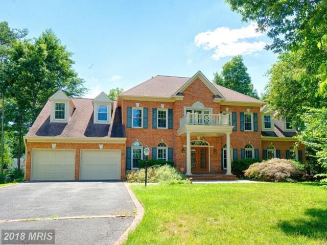 20985 Flatboat Court, Sterling, VA 20165 (#LO10296819) :: Provident Real Estate