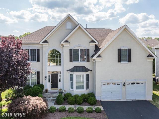 43891 Camellia Street, Ashburn, VA 20147 (#LO10297595) :: Labrador Real Estate Team