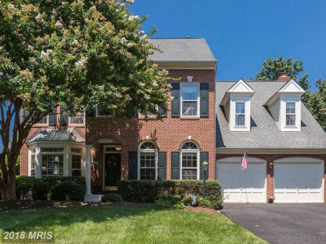 47490 Coldspring Place, Sterling, VA 20165 (#LO10297609) :: Provident Real Estate