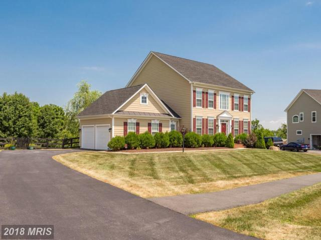 909 Queenscliff Court, Purcellville, VA 20132 (#LO10297983) :: Pearson Smith Realty