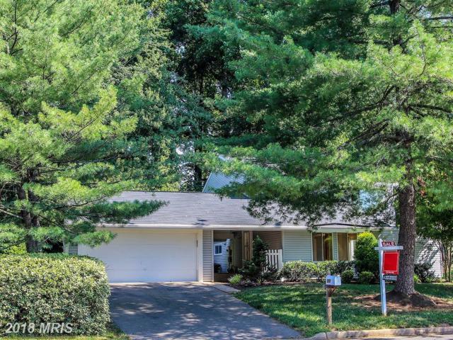 218 Sugarland Run Drive, Sterling, VA 20164 (#LO10298048) :: Provident Real Estate