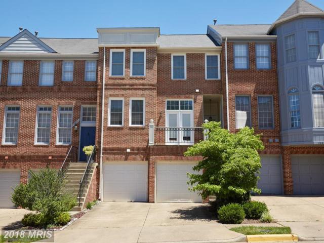 20656 Sound Terrace, Sterling, VA 20165 (#LO10298067) :: Provident Real Estate