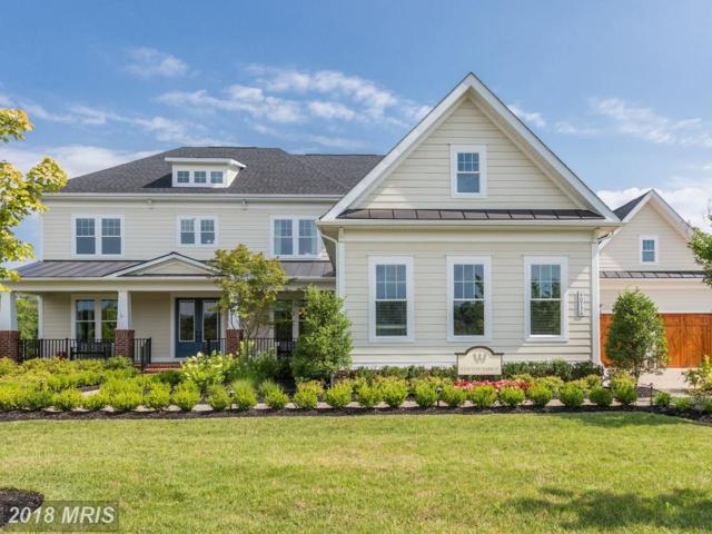 40736 Wild Plum Drive, Aldie, VA 20105 (#LO10298250) :: The Vashist Group