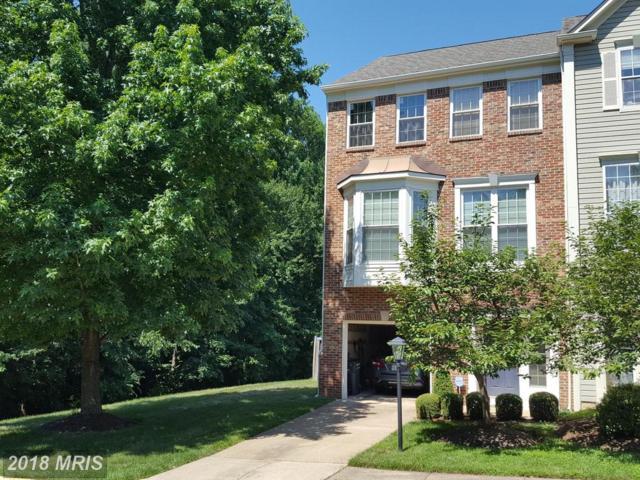20855 Driftwood Terrace #0, Sterling, VA 20165 (#LO10298374) :: Provident Real Estate