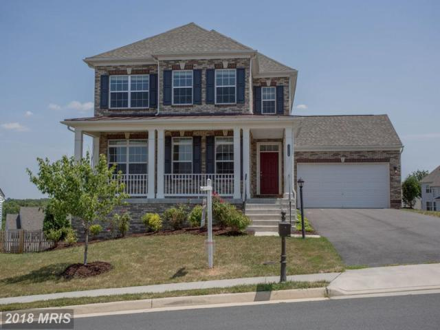 13450 Eagles Rest Drive, Leesburg, VA 20176 (#LO10298485) :: Network Realty Group