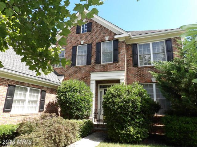 42066 Fiddlehead Place, Aldie, VA 20105 (#LO10298607) :: Circadian Realty Group