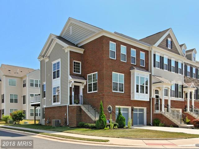 43558 Heritage Gap Terrace, Chantilly, VA 20152 (#LO10298646) :: Network Realty Group