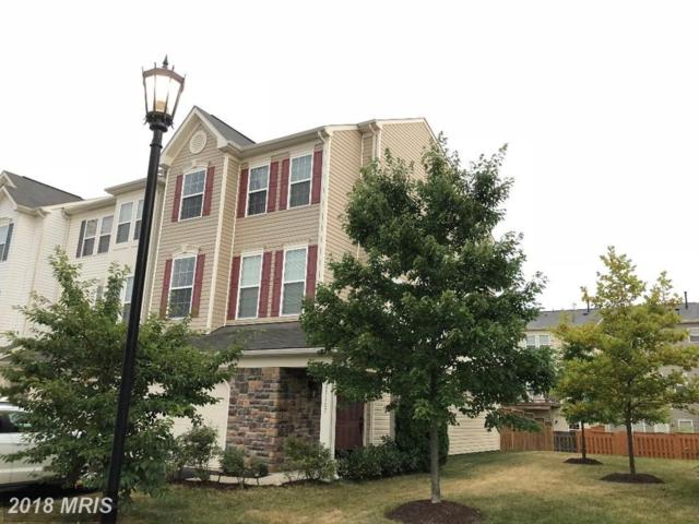 25167 Hummocky Terrace, Aldie, VA 20105 (#LO10298855) :: The Gus Anthony Team
