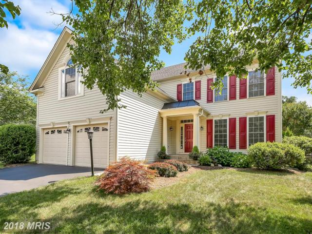 47627 Rhyolite Place, Sterling, VA 20165 (#LO10299351) :: Provident Real Estate