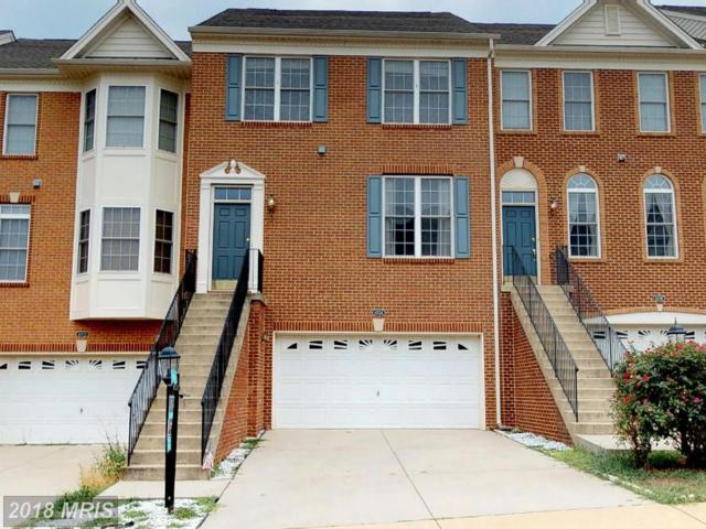43724 Piedmont Hunt Terrace, Ashburn, VA 20148 (#LO10299561) :: Colgan Real Estate