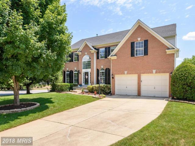 21336 Clappertown Drive, Ashburn, VA 20147 (#LO10299644) :: LoCoMusings