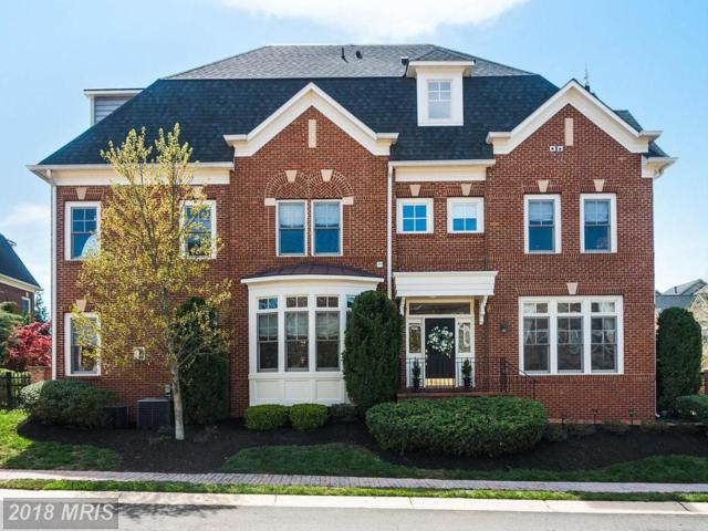 43673 Palmetto Dunes Terrace, Leesburg, VA 20176 (#LO10299957) :: Blackwell Real Estate