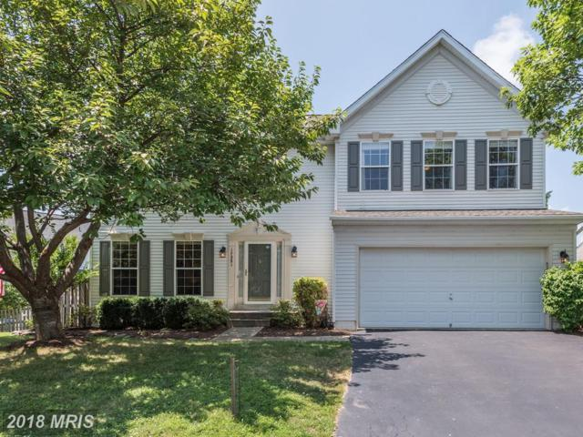 17251 Castle Court, Purcellville, VA 20132 (#LO10300145) :: Pearson Smith Realty