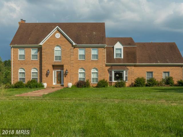 18766 Woodburn Road, Leesburg, VA 20175 (#LO10301018) :: Provident Real Estate