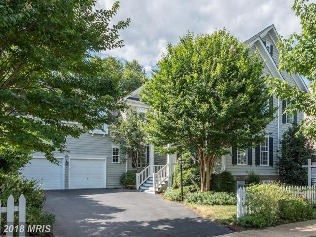 43028 Brookton Way, Ashburn, VA 20147 (#LO10301255) :: Provident Real Estate