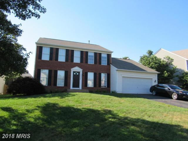 20895 Chippoaks Forest Circle, Sterling, VA 20165 (#LO10301298) :: Eng Garcia Grant & Co.