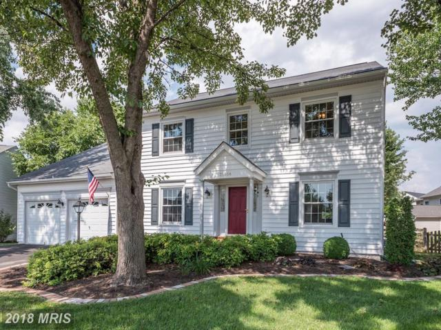 20666 Stillpond Court, Ashburn, VA 20147 (#LO10301309) :: Provident Real Estate