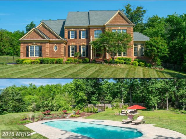 27563 Equine Court, Chantilly, VA 20152 (#LO10301328) :: The Vashist Group