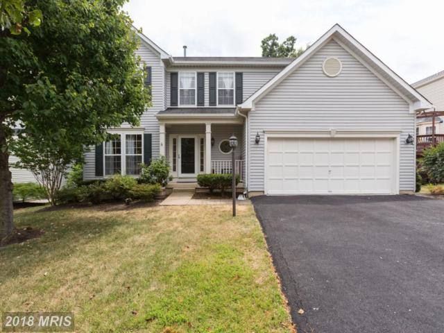 42881 Bold Forbes Court, Ashburn, VA 20147 (#LO10301356) :: Provident Real Estate