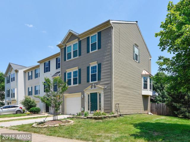 43222 Chokeberry Square, Ashburn, VA 20147 (#LO10301997) :: Provident Real Estate