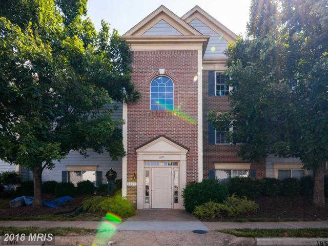 1127 Huntmaster Terrace NE #202, Leesburg, VA 20176 (#LO10302028) :: Provident Real Estate