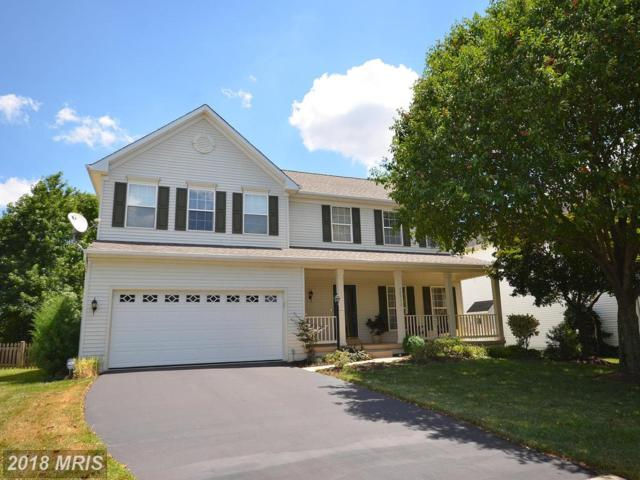 20532 Deerwatch Place, Ashburn, VA 20147 (#LO10302785) :: Provident Real Estate