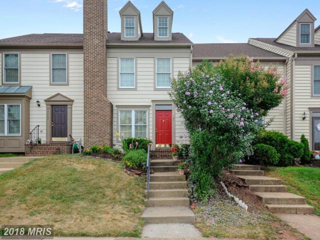 44004 Kitts Hill Terrace, Ashburn, VA 20147 (#LO10302941) :: Provident Real Estate