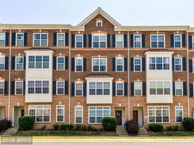 22579 Verde Gate Terrace, Ashburn, VA 20148 (#LO10303048) :: Pearson Smith Realty