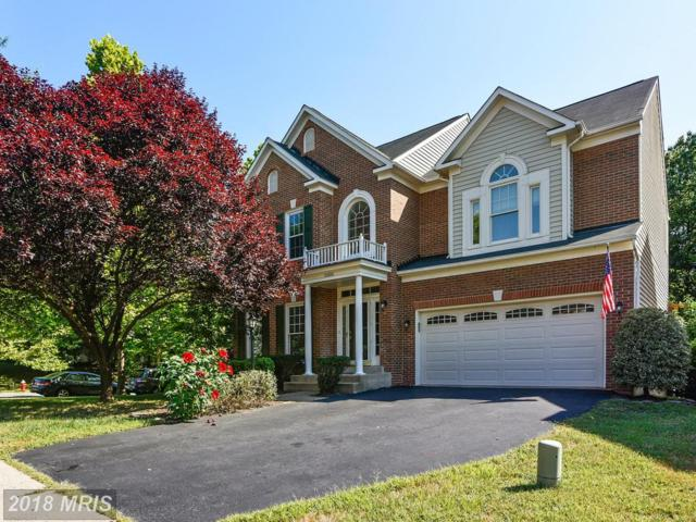 20886 Laurel Leaf Court, Ashburn, VA 20147 (#LO10303692) :: Colgan Real Estate