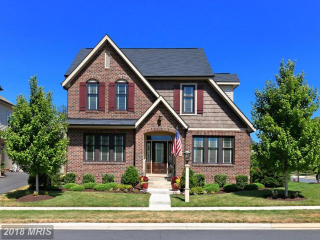 42413 Myan Gold Drive, Ashburn, VA 20148 (#LO10304316) :: Colgan Real Estate