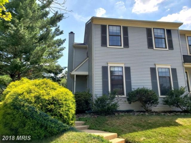 1 Haxall Court, Sterling, VA 20165 (#LO10304569) :: The Putnam Group